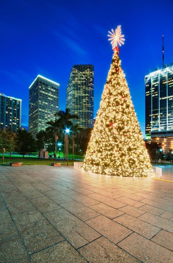 De Kerstboom van Miami stock foto's