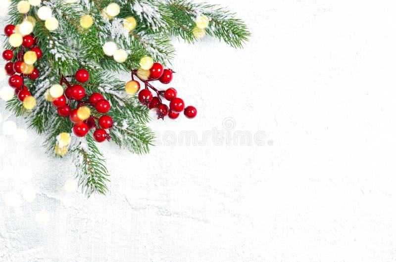 De kerstboom vertakt zich de rode decoratie van bessen gouden lichten stock afbeeldingen