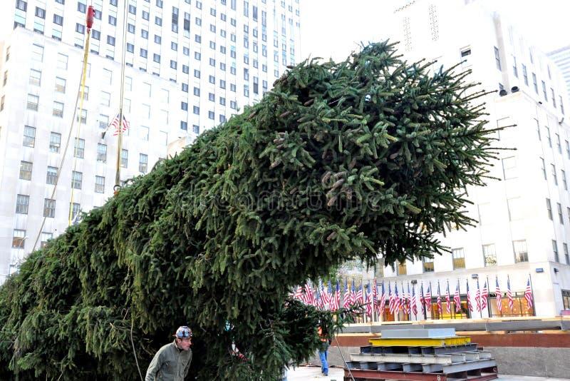 De Kerstboomaankomst van het Rockefellercentrum royalty-vrije stock fotografie