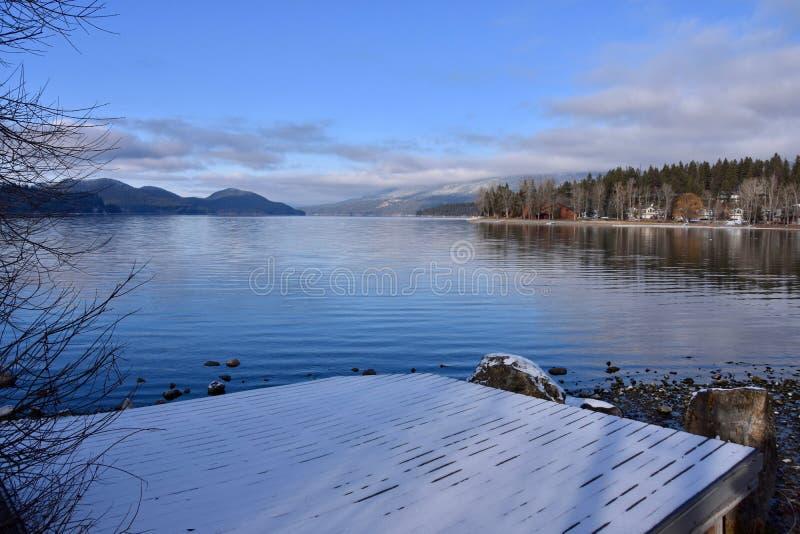 De Kerstkaart van het witte vismeer stock afbeeldingen
