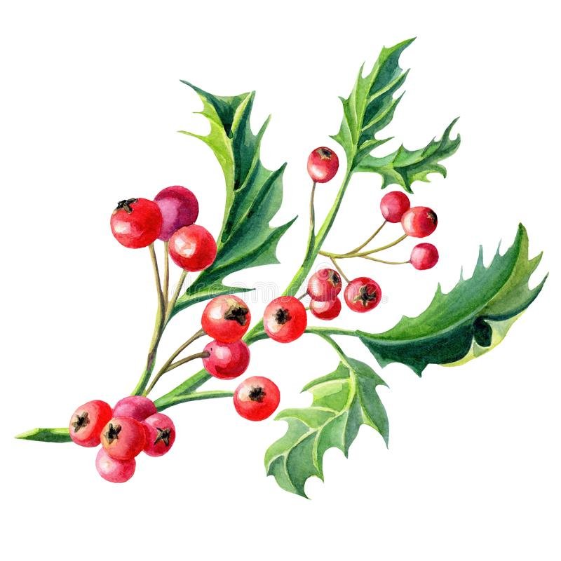 De Kerstkaart van de waterverfkroon met een twijg van Hulst en bessen Illustratie vector illustratie