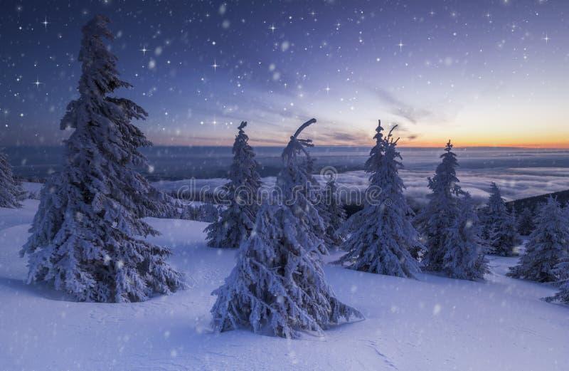 de Kerstmisachtergrond van sneeuw de winterlandschap met sneeuw of rijp behandelde sparren en exemplaarruimte - de winter magisch stock fotografie