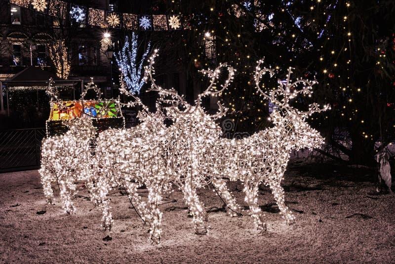 De Kerstmisdecoratie en de het Kerstmisrendier en ar steken a aan royalty-vrije stock foto's