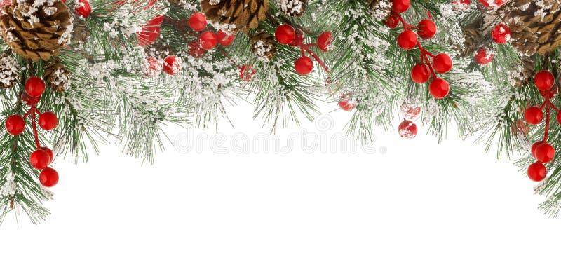 De Kerstmisgrens van groene spar vertakt zich met sneeuw, rode die bessen en kegels op wit wordt geïsoleerd royalty-vrije stock foto