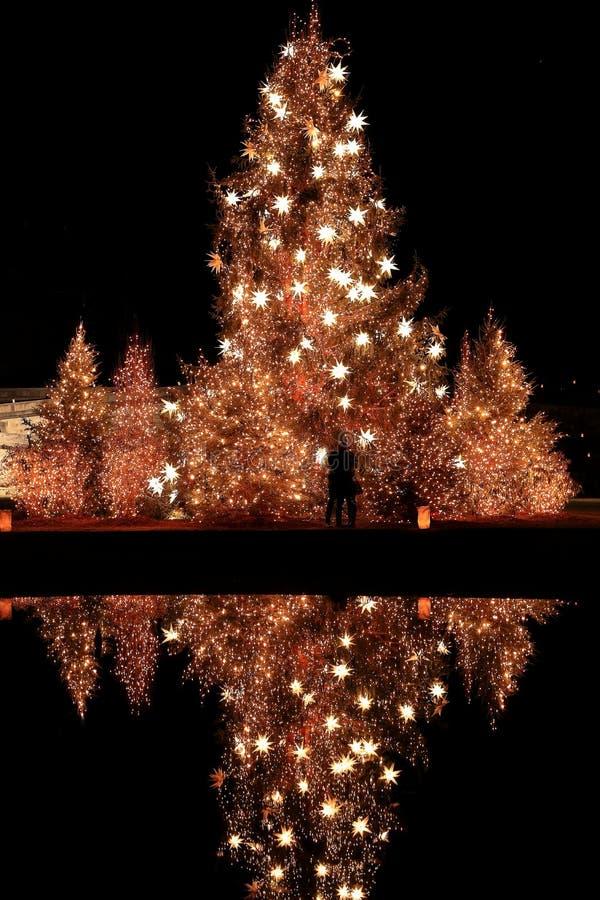 De Kerstmiskus royalty-vrije stock foto's