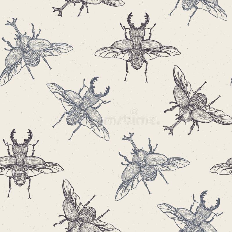 De kevers, hand trekken vector van het schets de naadloze patroon royalty-vrije illustratie