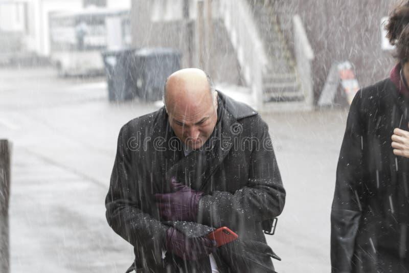 ` De Kevin O circonspect dans la tempête de neige image stock