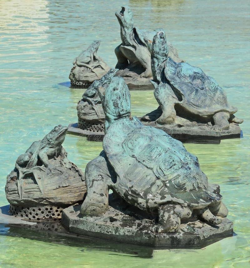De Kikkers van de schildpaddenlezing op Belle Isle stock foto