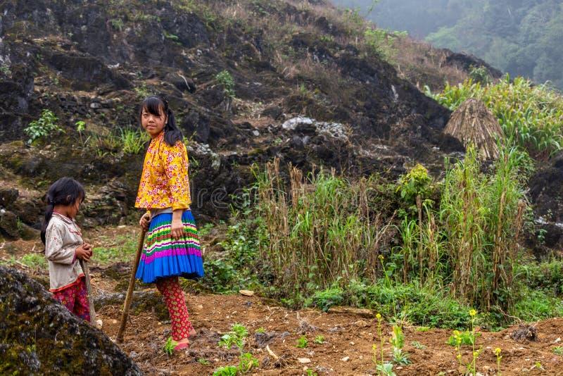 De kinderarbeid Vietnam van de Hmongetnische minderheid stock afbeeldingen