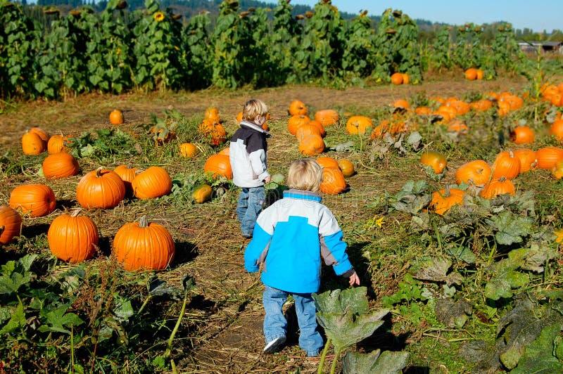 De kinderen bij Pompoen herstellen Halloween stock fotografie
