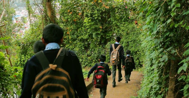 De kinderen gaan naar school, gaan de Kleine jongens en de meisjes met een rugzak naar school Achter mening stock afbeeldingen