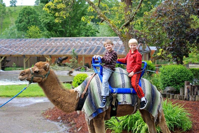 De kinderen op een kameel berijden royalty-vrije stock fotografie