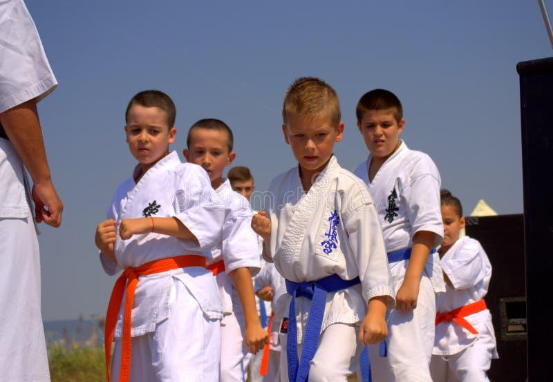 De kinderen van de karateclub royalty-vrije stock foto