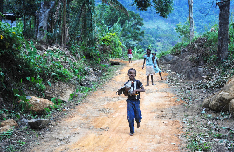 De kinderen van Lankan van Sri royalty-vrije stock foto