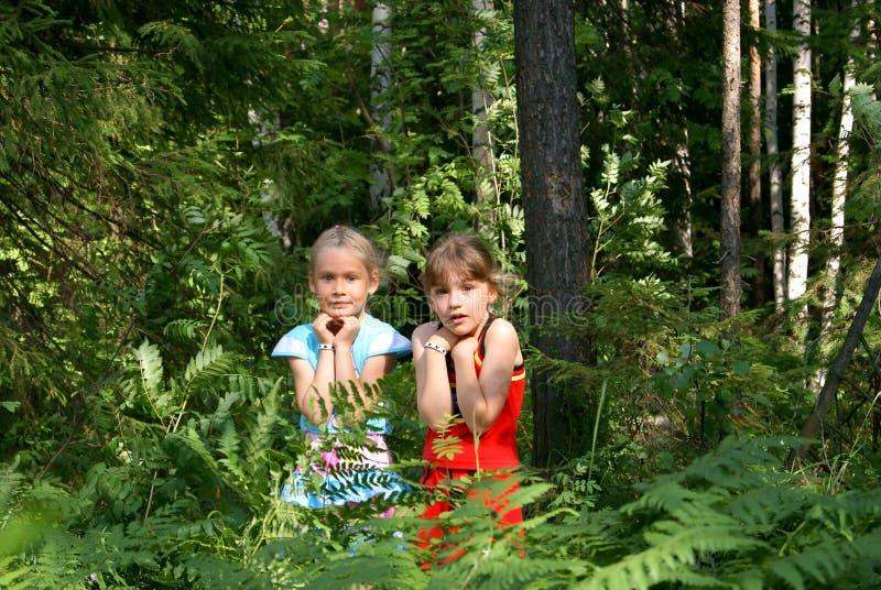 De kinderen zijn bang in hout royalty-vrije stock foto