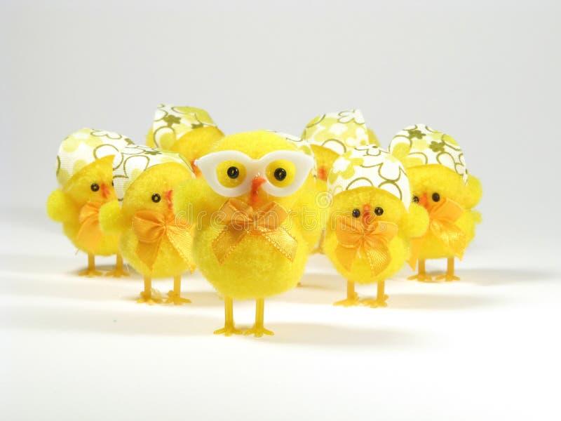 De kippenfamilie van Pasen stock afbeelding