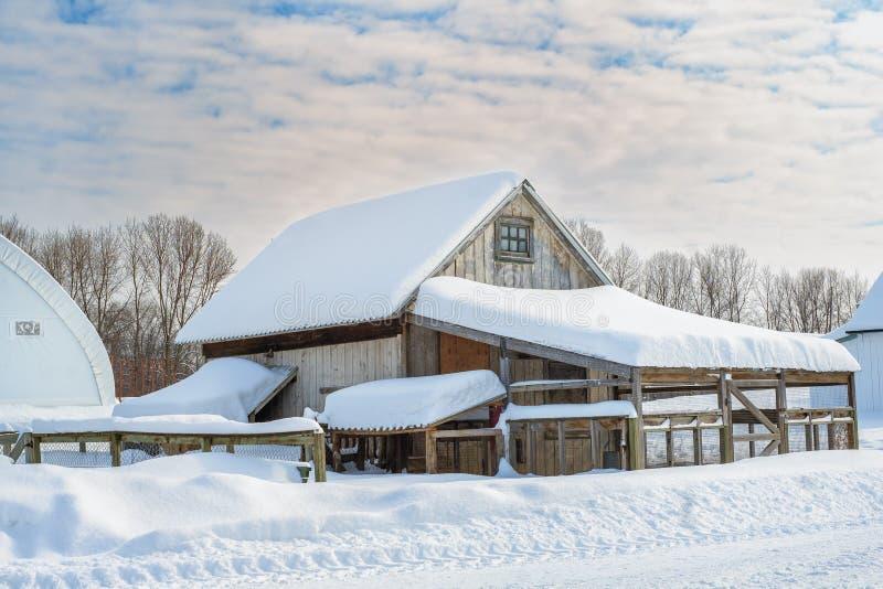 De kippenhuis van landbouwbedrijfgebouwen royalty-vrije stock fotografie