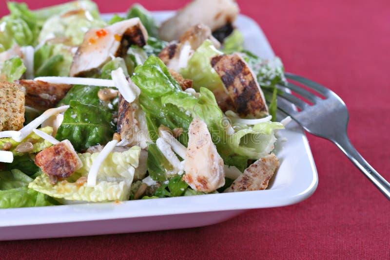 De kippensalade van de barbecue stock afbeeldingen