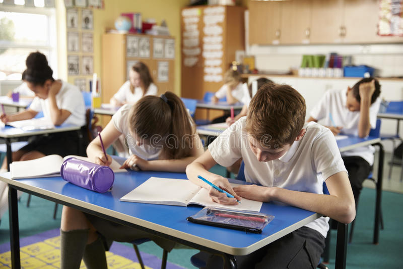De klasse van lage schooljonge geitjes die tijdens een les bestuderen, sluit omhoog royalty-vrije stock afbeelding