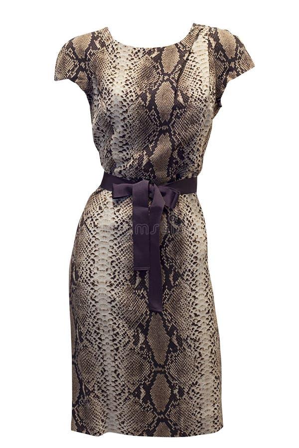 De kleding van de pythonmanier stock afbeelding