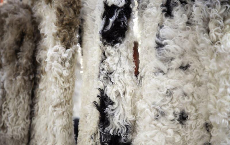 De kleding van de schapenwol royalty-vrije stock foto