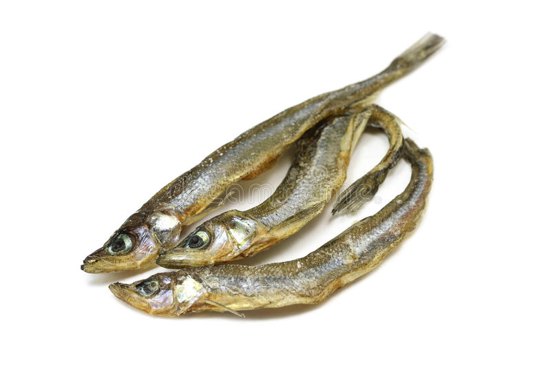De kleine droge spiering van de vissenregenboog royalty-vrije stock foto