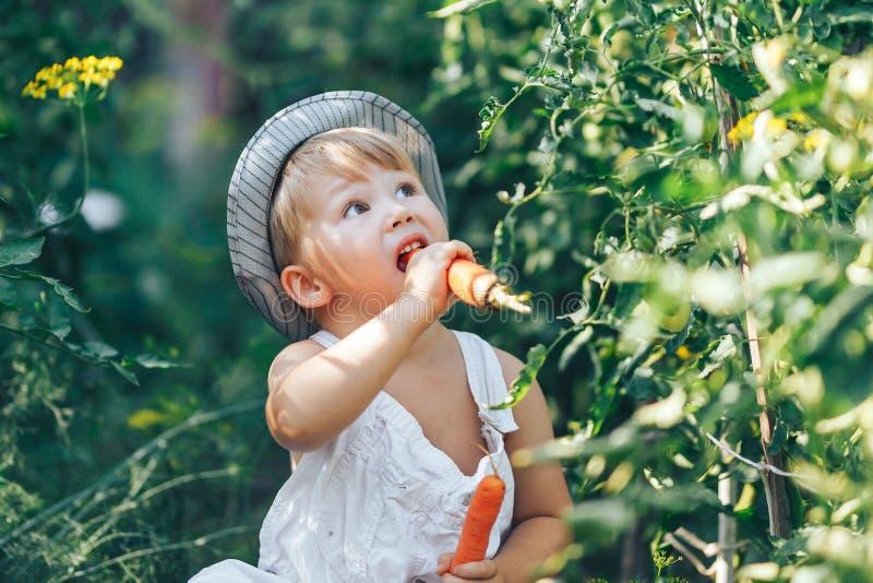 De kleine het jonge geitjezitting van de jongenslandbouwer in lijn van tomatenplanten, die witte toevallige overall dragen past e royalty-vrije stock afbeeldingen