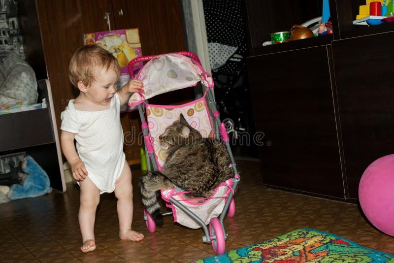 De kleine peuter rolt zijn grote kat in een kleine babystuk speelgoed wandelwagen royalty-vrije stock fotografie