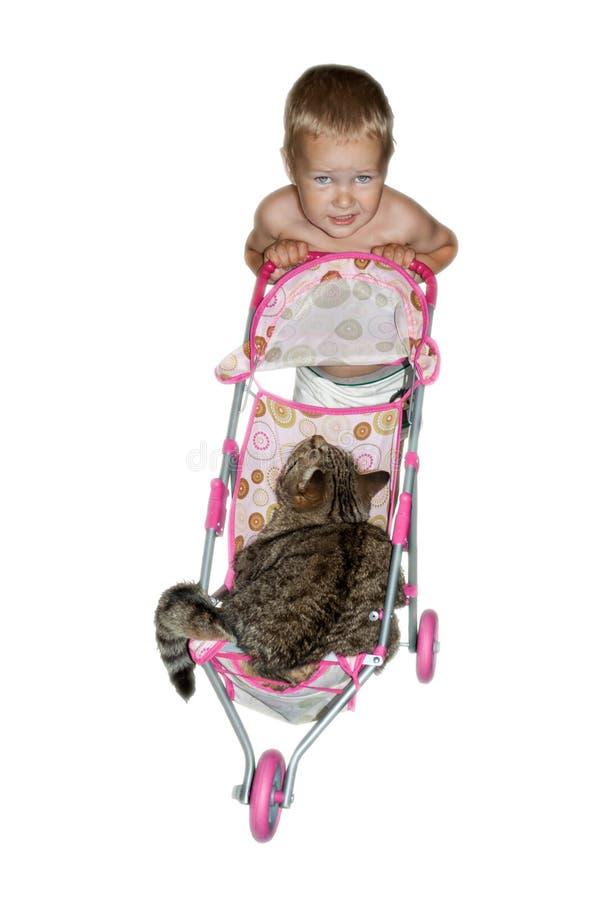 De kleine peuter rolt zijn grote kat in een kleine babystuk speelgoed wandelwagen stock foto