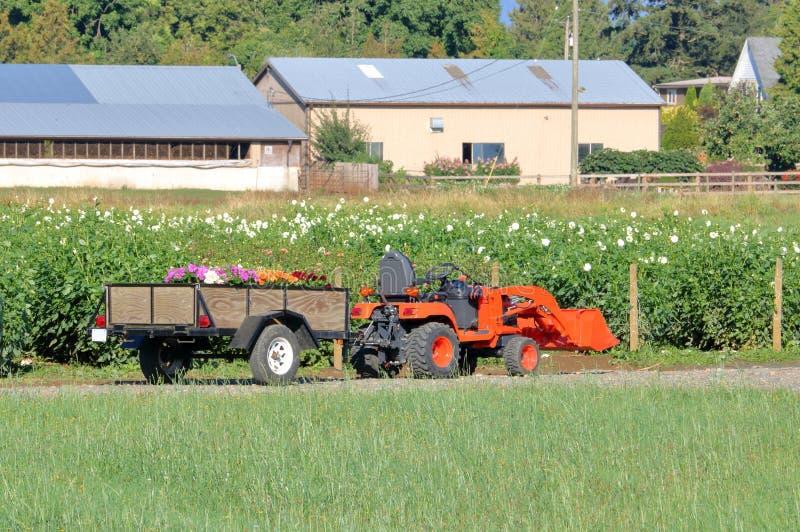 De kleine Tractor van het Nutslandbouwbedrijf stock foto's