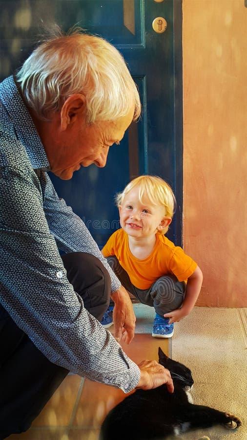 De kleine twee-jaar-oude jongen glimlacht gelukkig en bekijkt zijn grootvader met bewondering, die een kat strijkt stock afbeeldingen