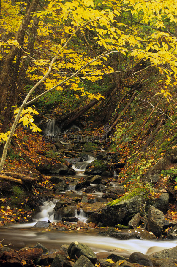 De kleine Waterval van de Herfst stock afbeeldingen