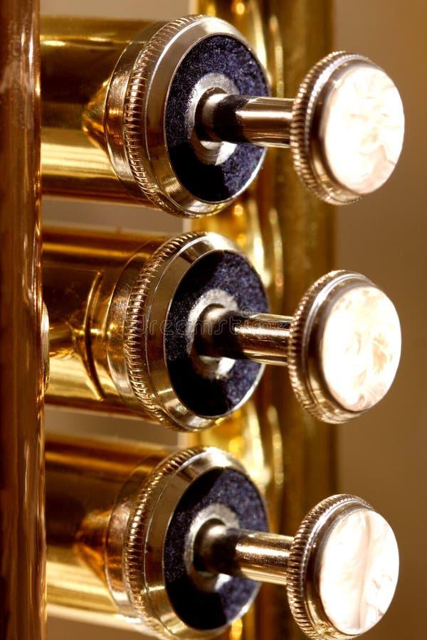 De kleppen van de parel van een trompet stock afbeeldingen
