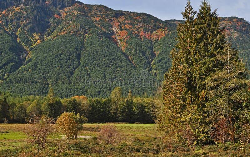 De Kleur van de brand op de Berg stock fotografie