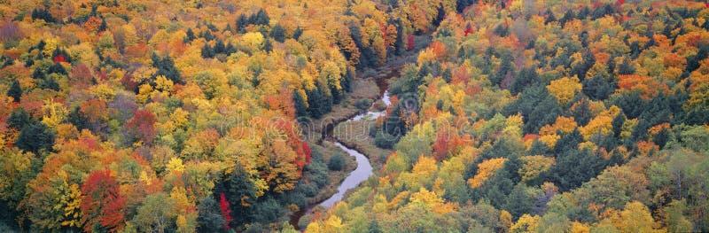 De kleur van de herfst stock afbeeldingen
