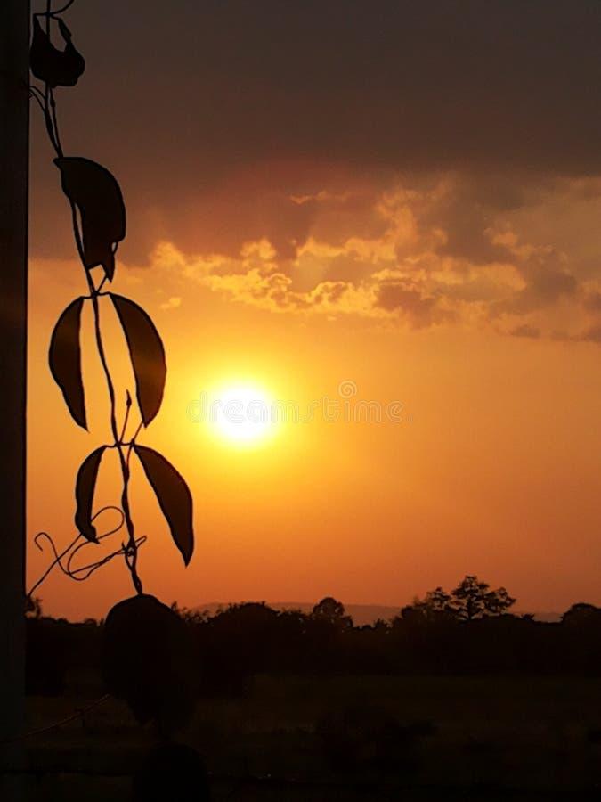 De kleur van de zon stock afbeeldingen