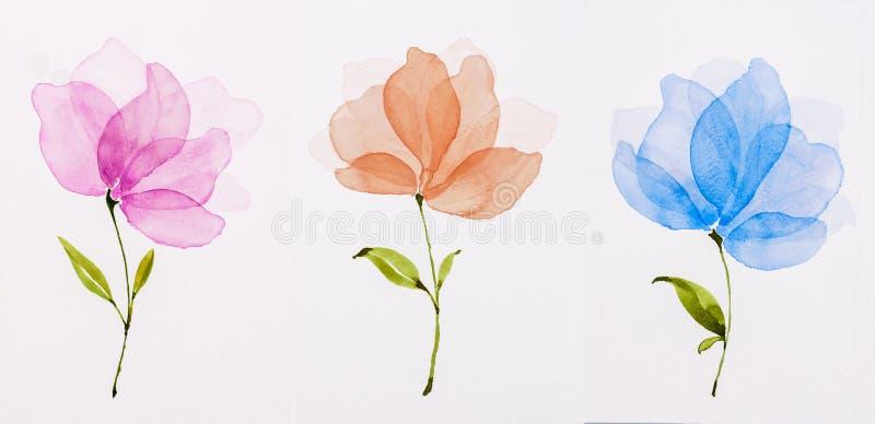 De kleur van het beeldwater, hand trekt, blauw Bloemenroze, oranje, vector illustratie