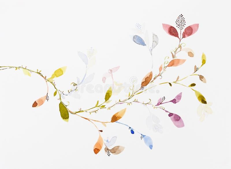 De kleur van het beeldwater, hand trekt, bloemen, bladeren, klimop royalty-vrije illustratie