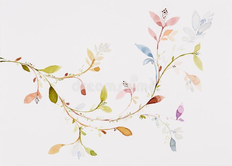 De kleur van het beeldwater, hand trekt, bloemen, bladeren, takken, klimop royalty-vrije illustratie