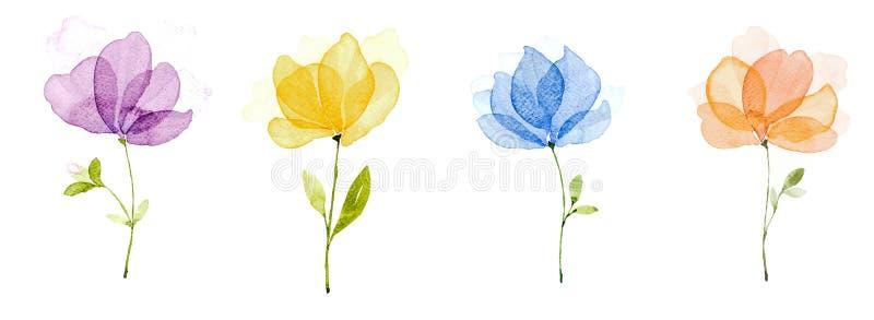 De kleur van het beeldwater, hand trekt, Purpere blauwe bloemen, geel, sinaasappel stock illustratie
