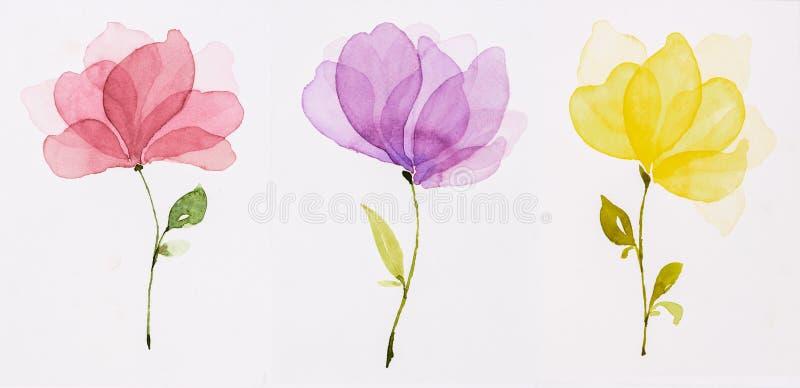 De kleur van het beeldwater, hand trekt, Rode bloemen, geel purple, royalty-vrije illustratie