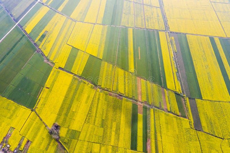 De kleur van de de lentelandbouwgrond royalty-vrije stock afbeelding