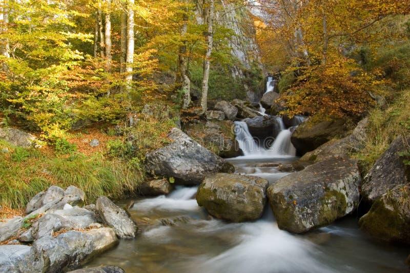 De kleuren van Automnal in de Franse Pyreneeën royalty-vrije stock afbeeldingen