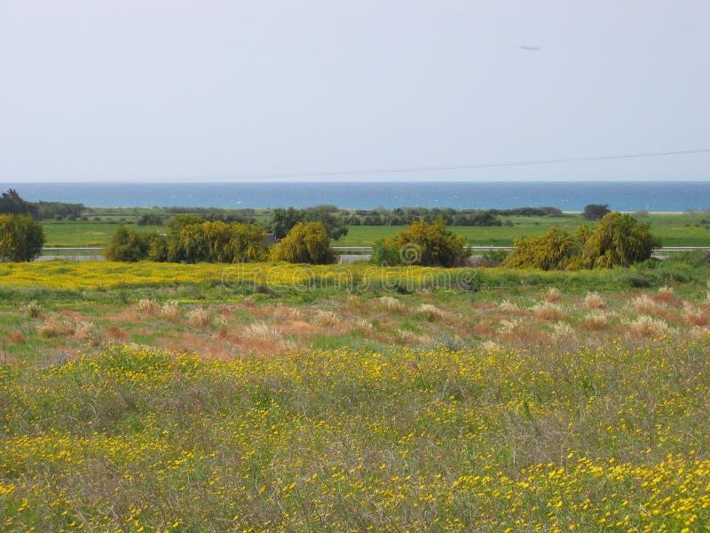 De Kleuren van Cyprus royalty-vrije stock fotografie