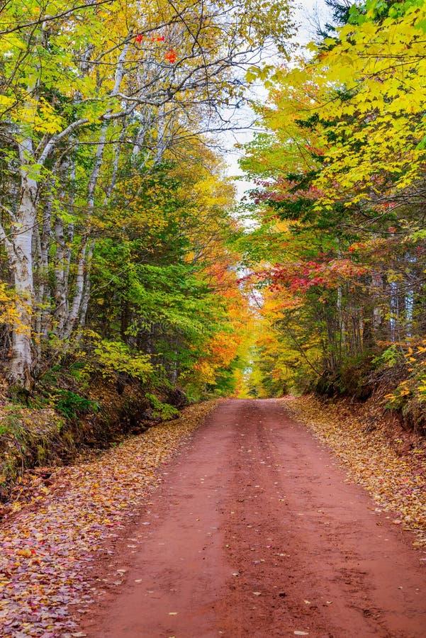 De kleuren van de daling in Canada royalty-vrije stock foto's