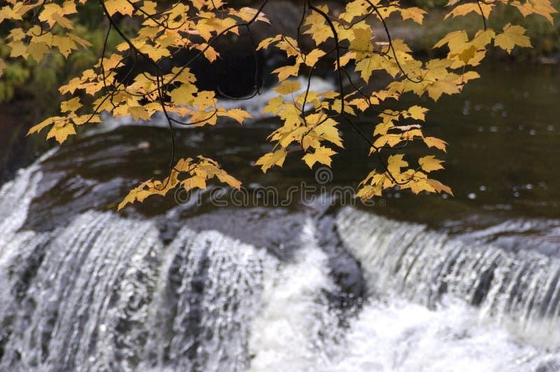 De Kleuren van de daling, Waterval, ToneelLandschap stock fotografie