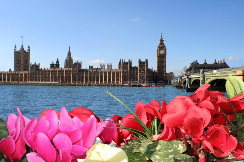 De kleuren van de lente van Londen. Bloemen, hemel, het Parlement royalty-vrije stock afbeelding