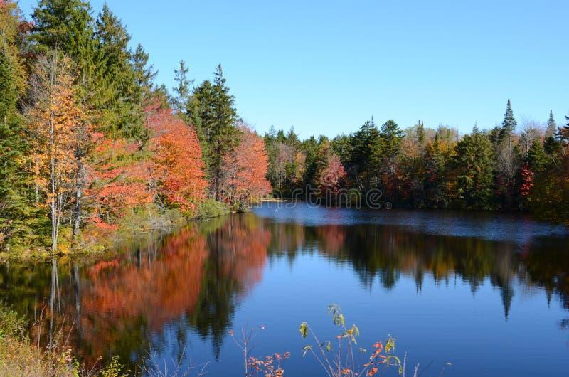 De kleuren van het dalingsgebladerte denkt van stil Adirondack-meer na royalty-vrije stock foto's