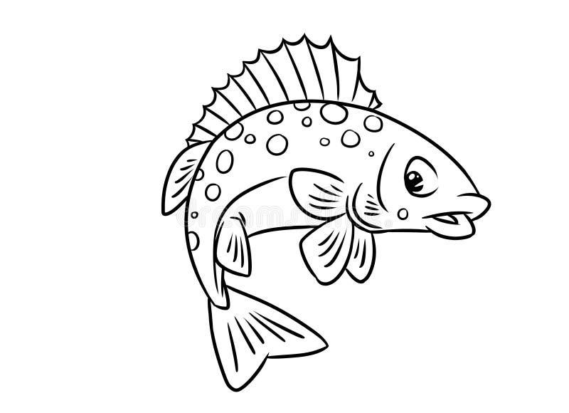 De kleurende pagina's van de vissenkemphaan vector illustratie