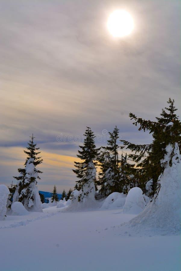 De kleurenwolken en winter stock afbeeldingen